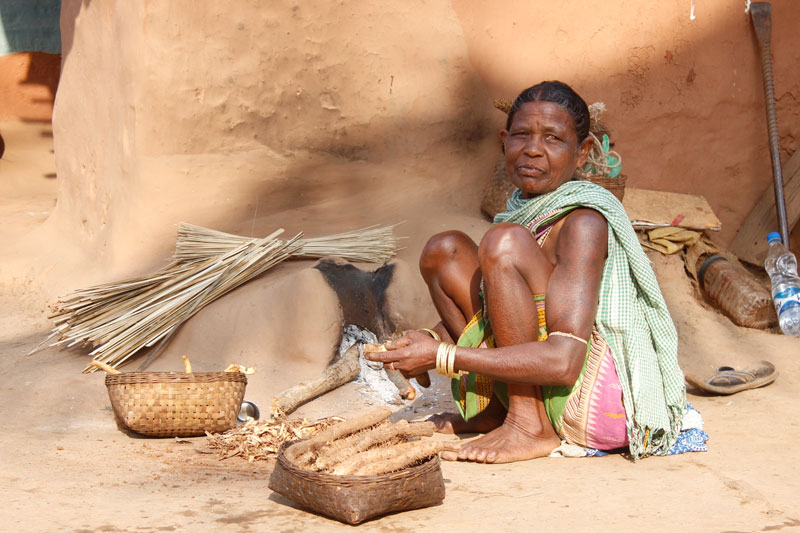 Bhatras