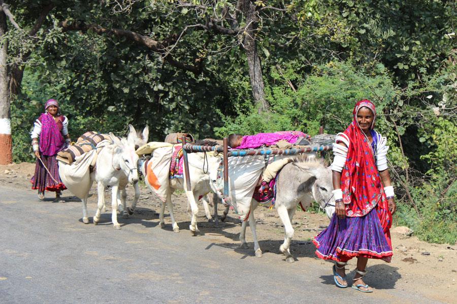 Rabari Tribe Gujarat