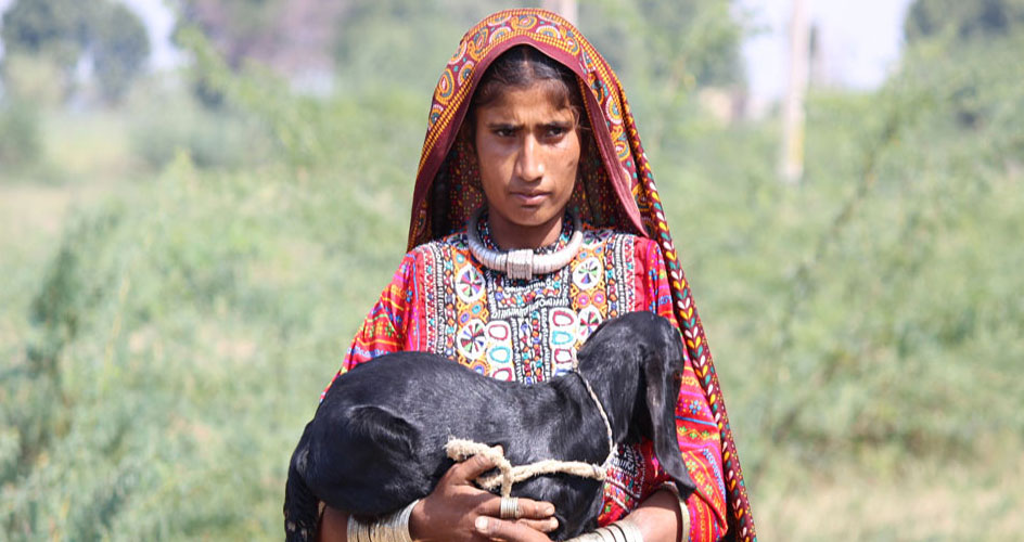 Fakirani Jat Tribal Girl Gujarat