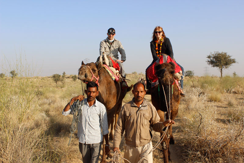 Camel Safari in thar desert
