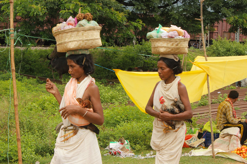 dongria kondh tribe odisha